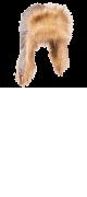 изображение Шапка-ушанка длинный ворс